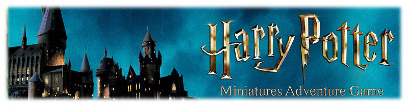 Harry Potter Minaitures Adventure Game Store!