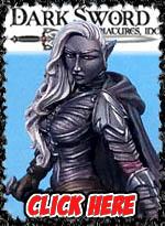 Dark Sword Miniatures Store!
